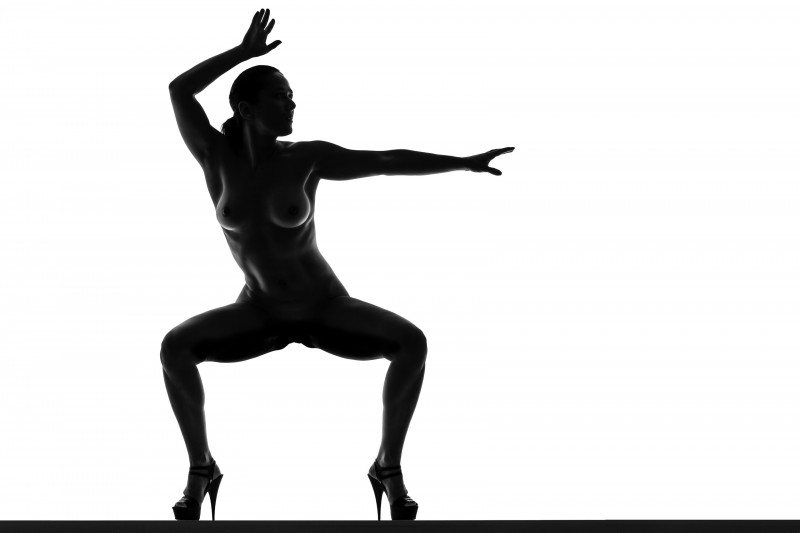 Silhouette Of Nude Woman In Bw Photograph By Johan Swanepoel